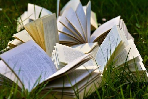 Uppslagna böcker på gräsmattan