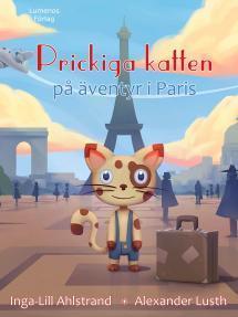 Prickiga katten på äventyr i Paris - pärmbild