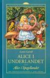 Alice peilintakamaassa